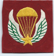 Vietnam LLDB Beret Patch