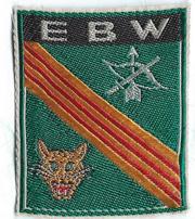 Vietnam EBW CIDG Patch