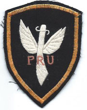 Provisional Recon Unit / PRU pocket Patch Vietnam