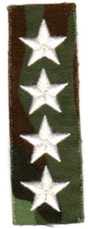 ARVN Ranger General Collar Insignia SVN