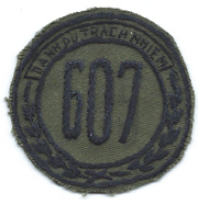607th Sector Nationalists Field Police Patch SVN ARVN