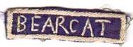 136th Infantry Regiment BEARCAT Tab