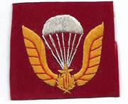 ARVN / South Vietnamese Army Airborne Beret Badge