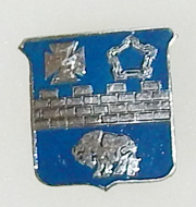 Vietnam 17th Infantry Beercan DI
