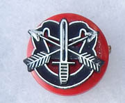 7th Special Forces Group Plastic Beret Flash