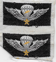 South Vietnamese Army / ARVN Airborne Master Airborne Jump Wings Uncut Set Of Two