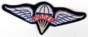 1960's Airborne Rigger Qualification Wing