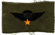 South Vietnamese Army / ARVN Basic Airborne Jump Wing Patch