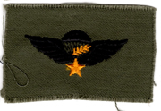 South Vietnamese Army / ARVN Master Airborne Jump Wing Patch