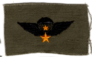 South Vietnamese Army / ARVN Senior Airborne Jump Wing Patch