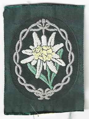 WWII German Army Mountain Troops Sleeve Patch