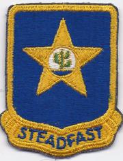 1950's- 1960's 409th Infantry Regiment Pocket Patch
