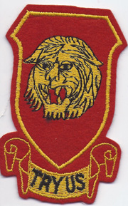 WWII 141st Field Artillery Battalion Patch