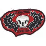 Recon Team Anaconda Pocket Patch Vietnam