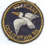 Company A 123rd Aviation Battalion PELICANS Pocket Hanger Vietnam