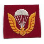 ARVN / South Vietnamese Army Airborne Beret Badge