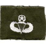 Vietnam Era US Army Master Airborne Jump Wing.