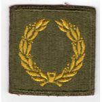 WWII Meritorious Unit Citation Patch