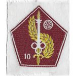 South Vietnamese Army / ARVN 10th Quartermaster Directorate Patch