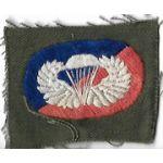 Vietnam 173rd Airborne Brigade Oval & Wing