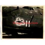 "B-24 ""Ol-Bird"" Nose Art Photo"