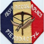 Vietnam 185th Airplane Recon Company PTERODACTYL Pocket Patch