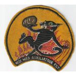 1940's-50's US Navy VC / VF-4 Squadron Patch