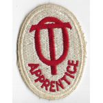 WWII Occupational Therapy Apprentice Patch