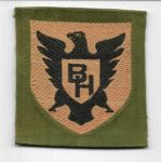 WWI 86th Division Liberty Loan Patch
