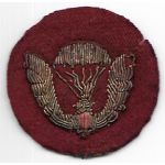 ARVN / South Vietnamese Army Airborne Bullion Beret Badge