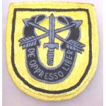 Vietnam 1st Special Forces Pocket Patch