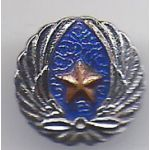 WWII Japanese Army Aviation Association Veterans Badge