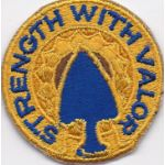 1950's- 1960's 69th Infantry Regiment Pocket Patch