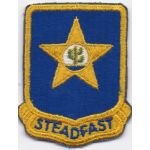 1950's- 1960's 409th Infantry Regiment Pocket Patch