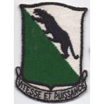 1950's- 1960's 69th Maintenance Battalion Pocket Patch