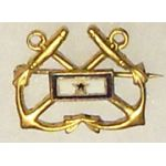 Naval Son In Service Pin
