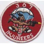 307th Airborne Engineers Pocket Patch